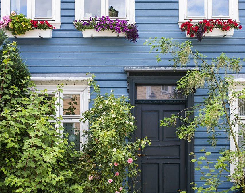 What are the different styles of windows?
