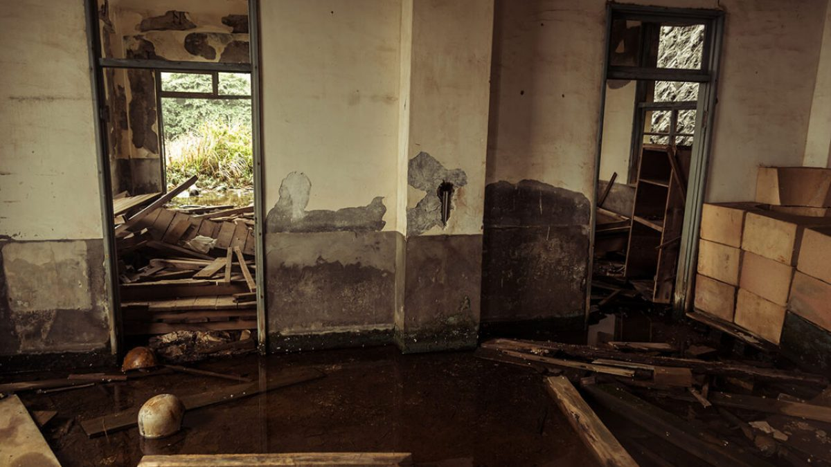 5 things you need to know about water damage
