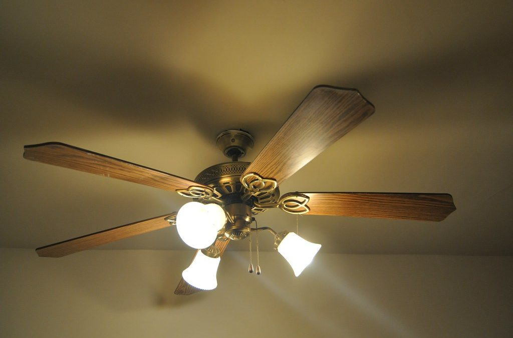 Ceiling Fans To Complement The Minimalistic Setup