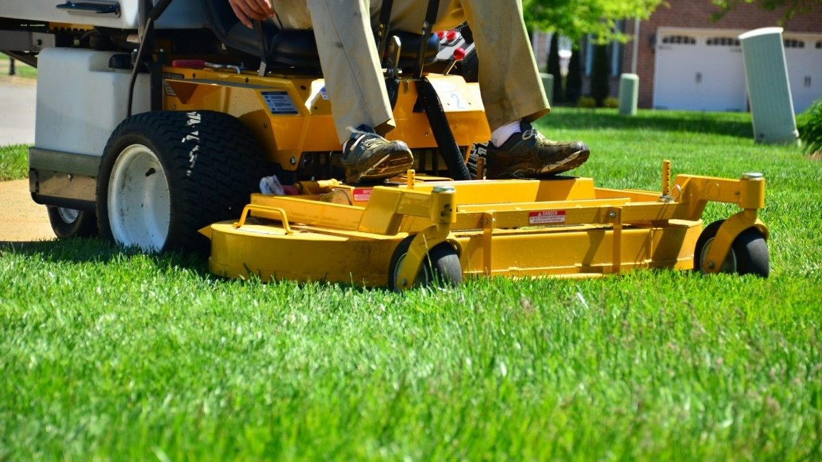 How to choose a reputable lawn care company